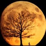tshirt screen prints of the moon