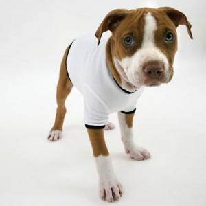 Dog t-shirts and hoodies