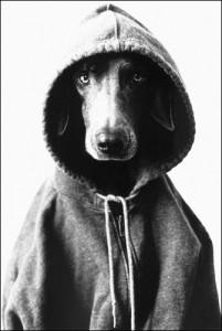 custom printed hoodies