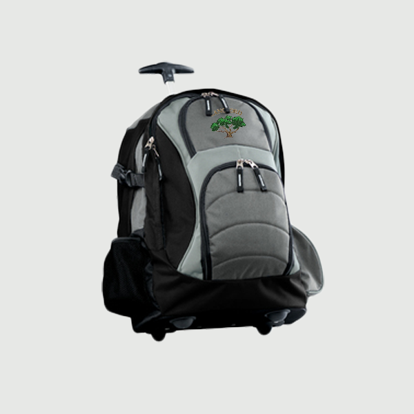 ... large main compartment with a laptop sleeve and a zippered front pocket  with a mesh organizer. The back and straps are padded for extra comfort.
