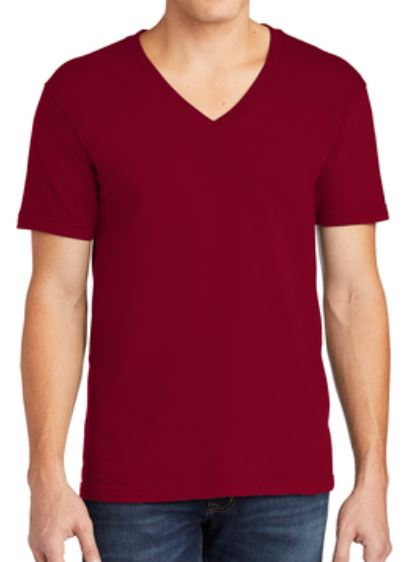 American apparel 2456W